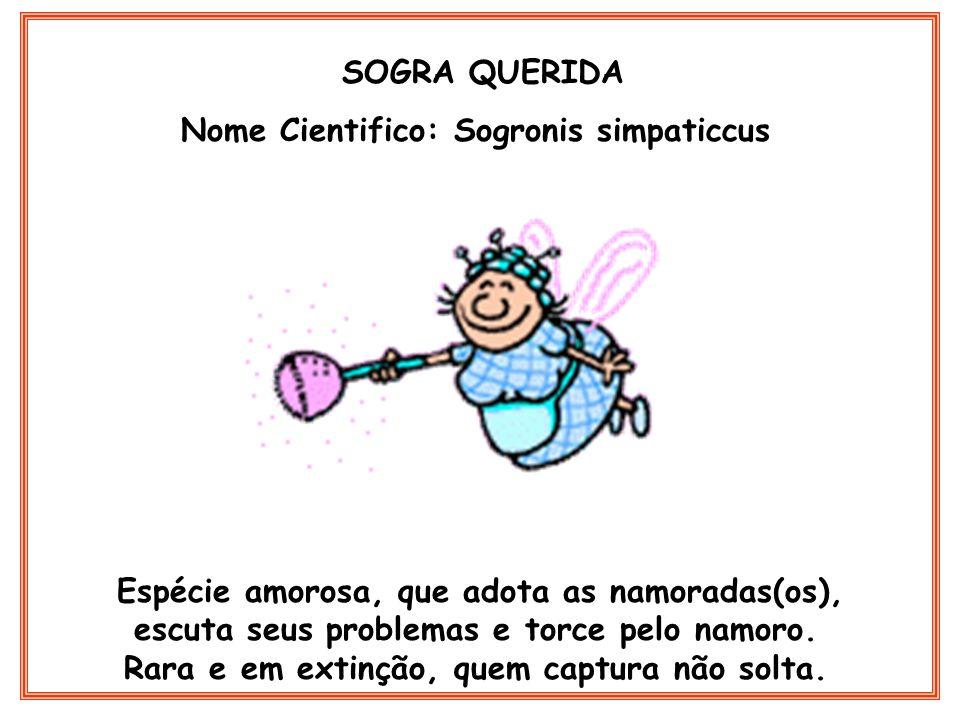 SOGRA QUERIDA Nome Cientifico: Sogronis simpaticcus Espécie amorosa, que adota as namoradas(os), escuta seus problemas e torce pelo namoro. Rara e em