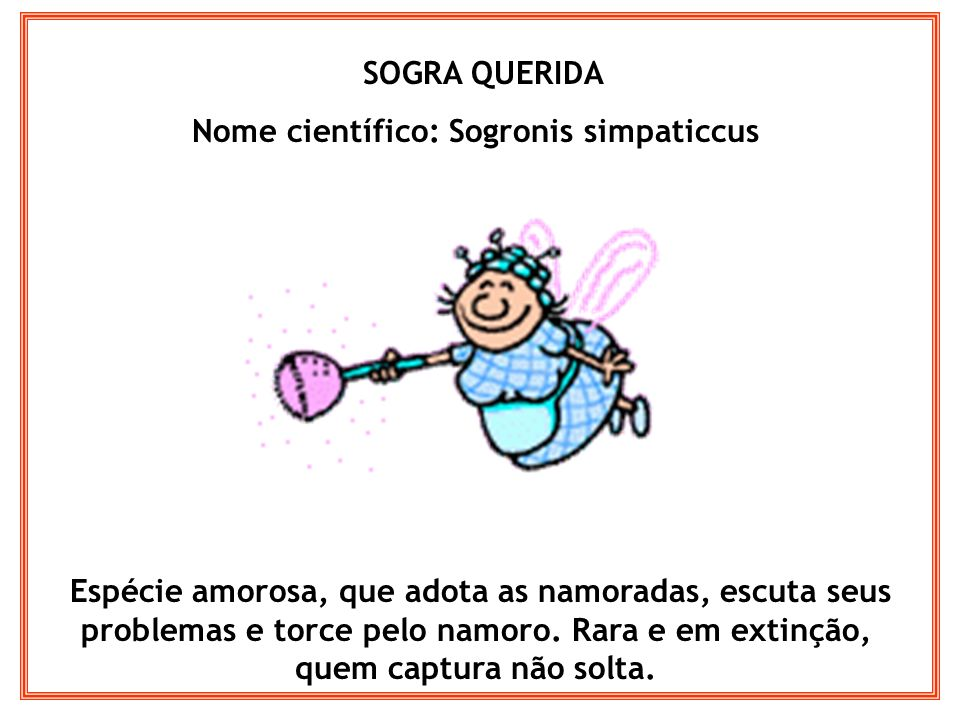 SOGRA QUERIDA Nome científico: Sogronis simpaticcus Espécie amorosa, que adota as namoradas, escuta seus problemas e torce pelo namoro. Rara e em exti