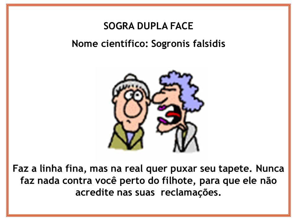SOGRA FASHION Nome científico: Sogronis modernetes Ela não quer saber quem é você, mas o que você veste.