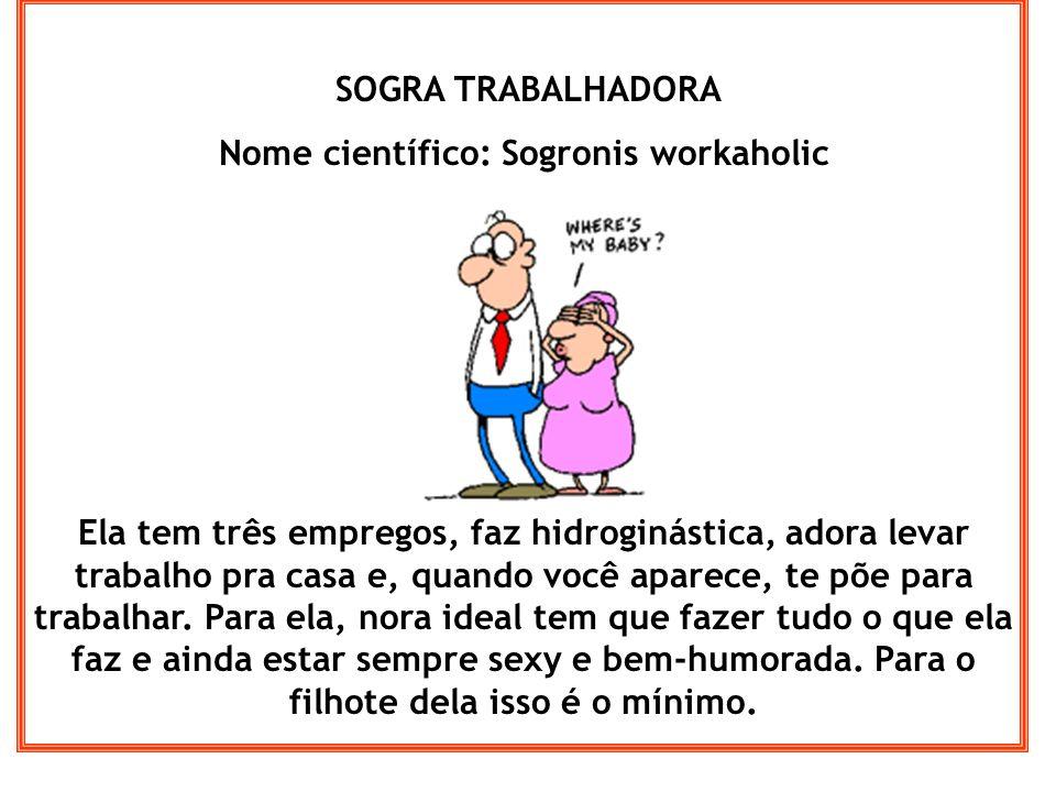 SOGRA TRABALHADORA Nome científico: Sogronis workaholic Ela tem três empregos, faz hidroginástica, adora levar trabalho pra casa e, quando você aparec