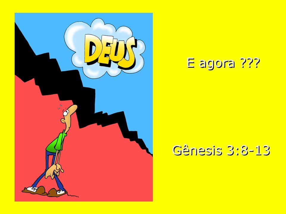E agora ??? Gênesis 3:8-13