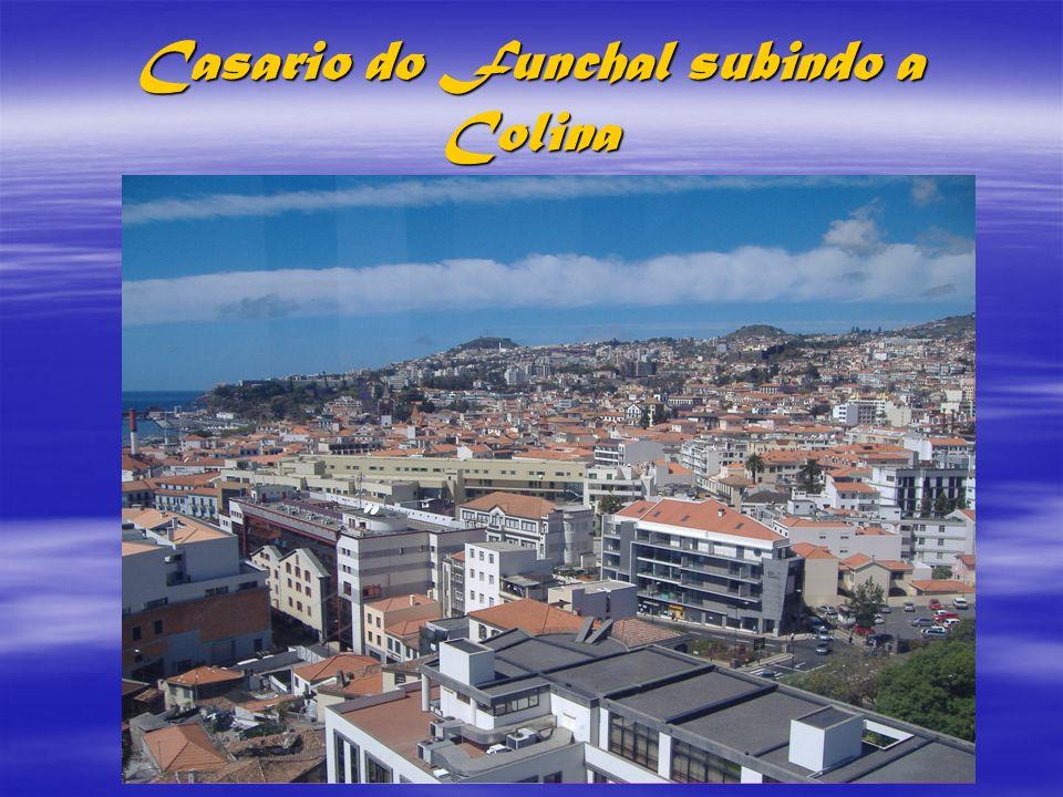 Ilha da Madeira A ilha da MADEIRA é a ilha principal do arquipélago português com o mesmo nome, situado no Oceano Atlântico, a oeste da costa Africana e que constitui juntamente com o Porto Santo, as Ilhas Desertas e as Ilhas Selvagens, uma região autónoma (a REGIÃO AUTÓNOMA DA MADEIRA).A capital da ilha e da Região Autónoma é a linda cidade do Funchal.