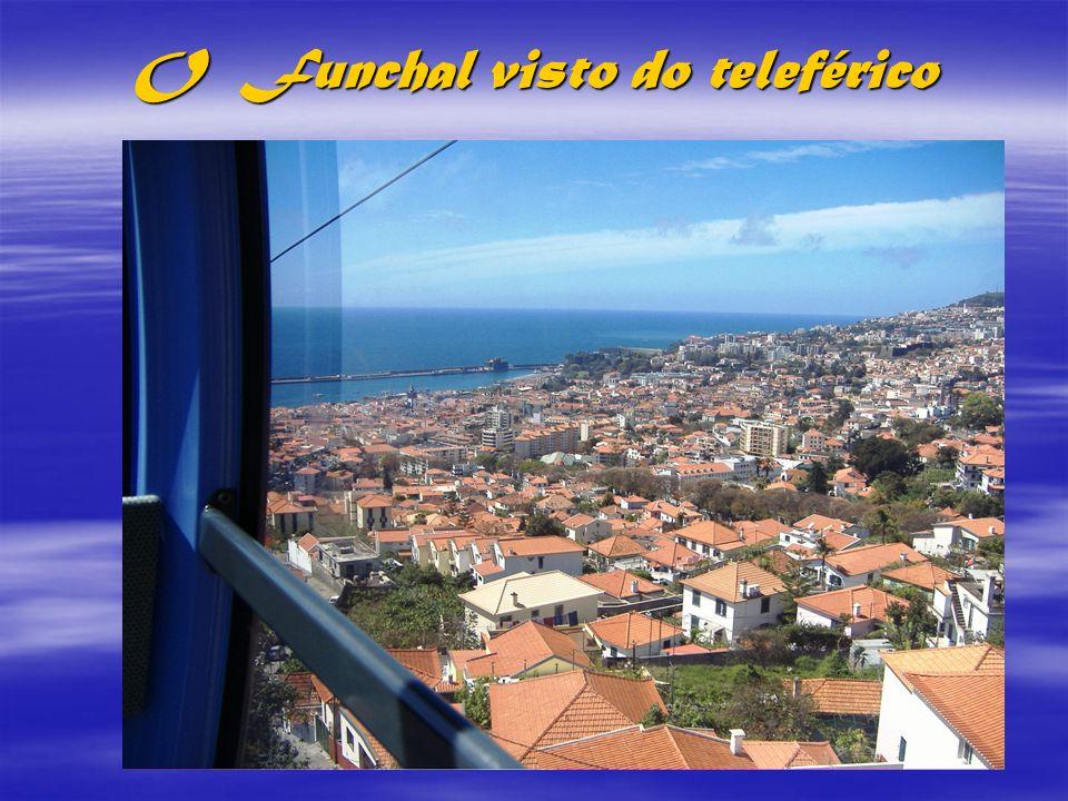 Casario do Funchal subindo a Colina