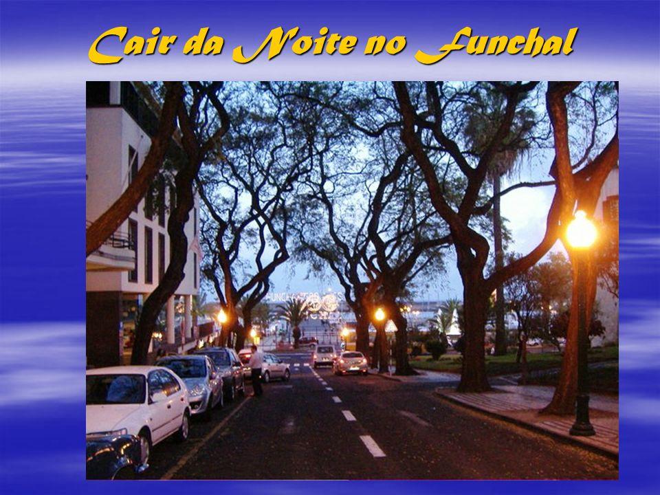Sereno cair da noite no Funchal
