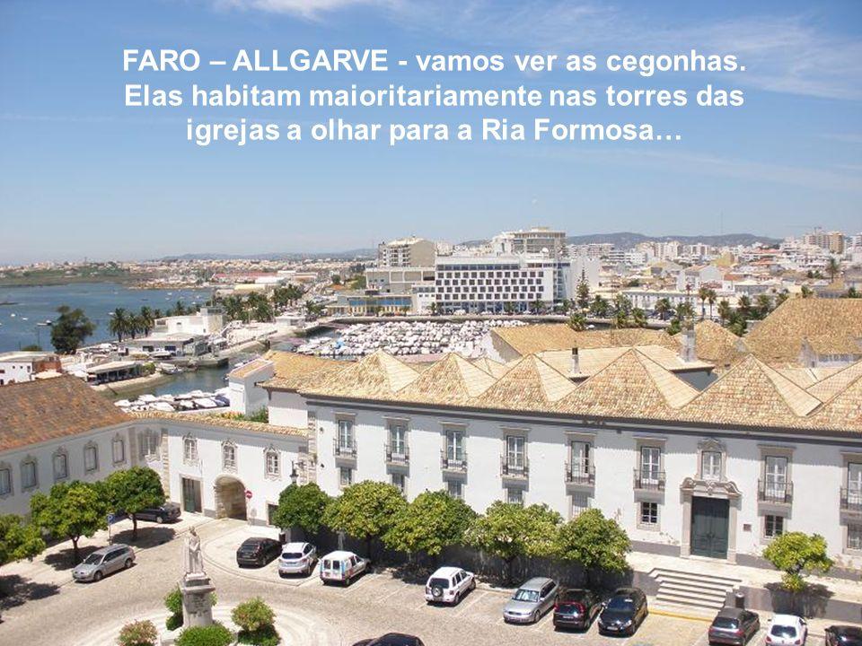 REALIZAÇÃO: António Santos: oantmasantos2@gmail.com PRODUÇÃO: António Santos: www.umraiodeluzefezseluz.blogspot.com Faro, 07 de Julho de 2009Música de