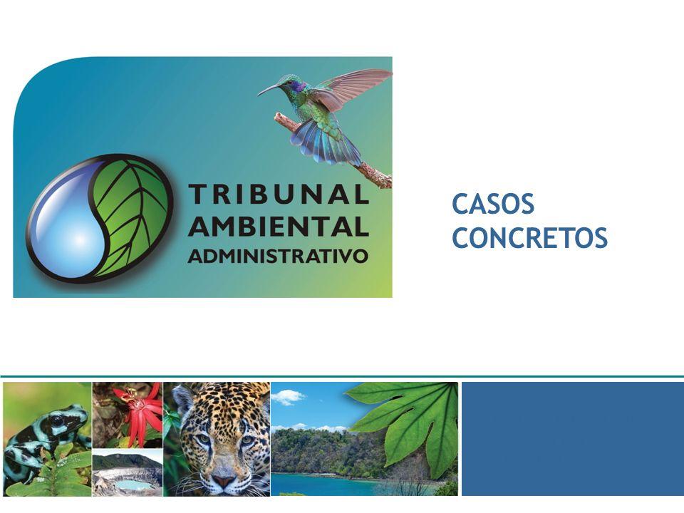 CASOS CONCRETOS Macapá - 2009 Por Jorge Bonilla Cervantes Jefe Unidad Técnica y Juez Suplente.