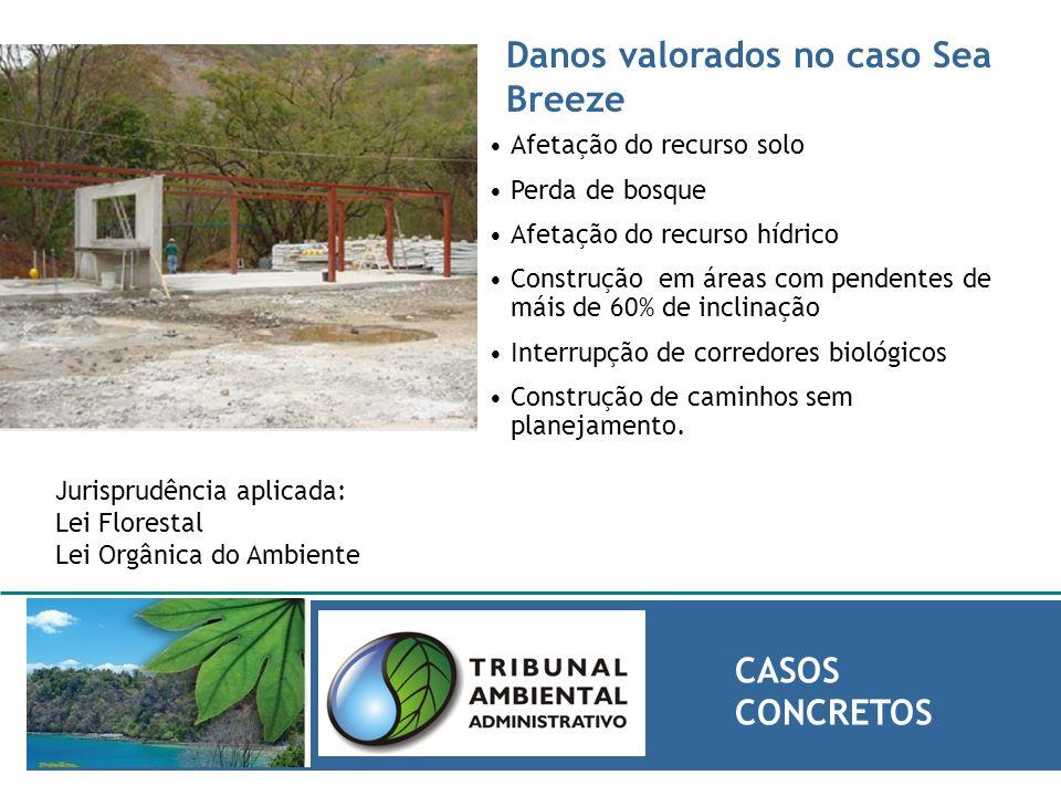 Danos valorados no caso Sea Breeze CASOS CONCRETOS Afetação do recurso solo Perda de bosque Afetação do recurso hídrico Construção em áreas com penden