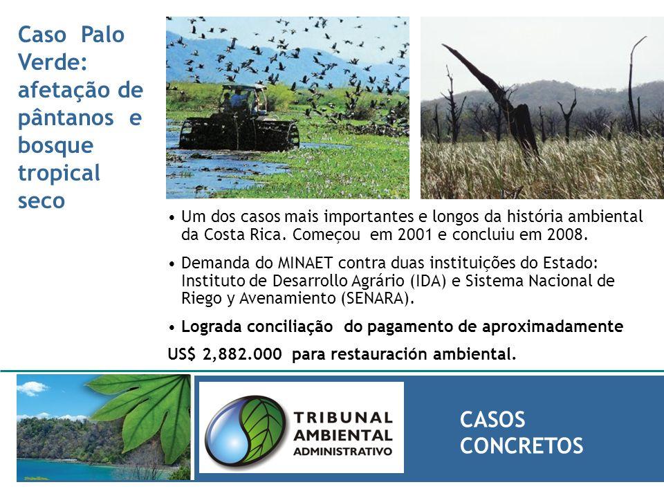 Caso Palo Verde: afetação de pântanos e bosque tropical seco CASOS CONCRETOS Um dos casos mais importantes e longos da história ambiental da Costa Ric