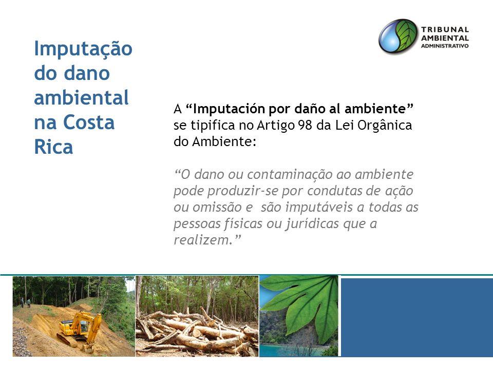 Muito obrigado Marzo a Julio de 2008 Presentado por José Lino Chaves Presidente