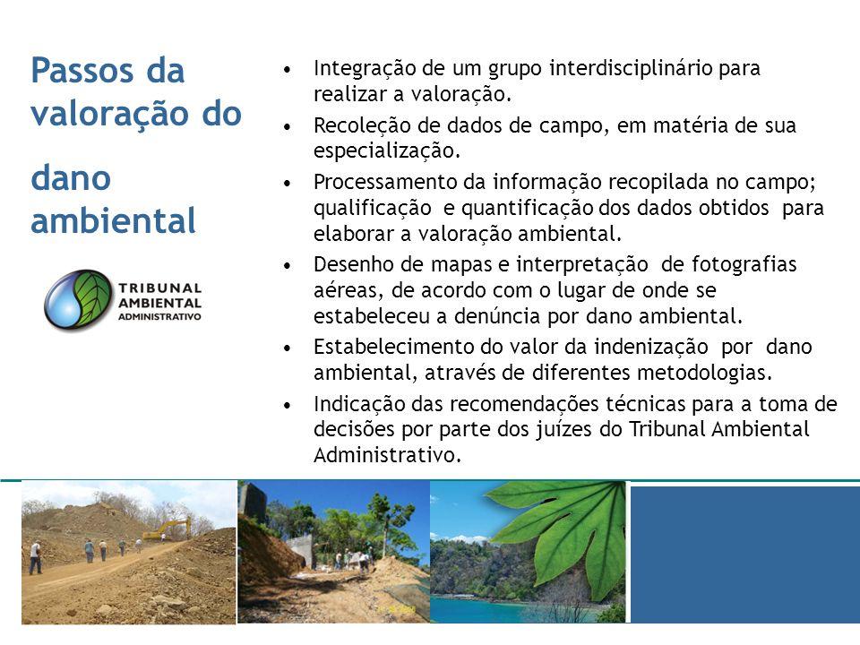 Passos da valoração do dano ambiental Informe de barridas ambientales Integração de um grupo interdisciplinário para realizar a valoração. Recoleção d