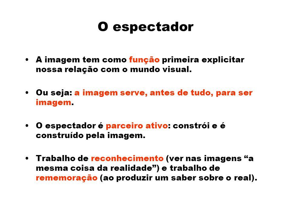 O espectador A imagem tem como função primeira explicitar nossa relação com o mundo visual.