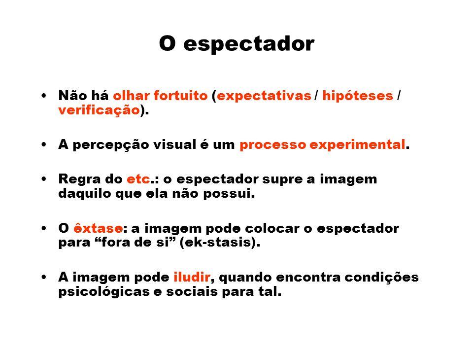 O espectador Não há olhar fortuito (expectativas / hipóteses / verificação).