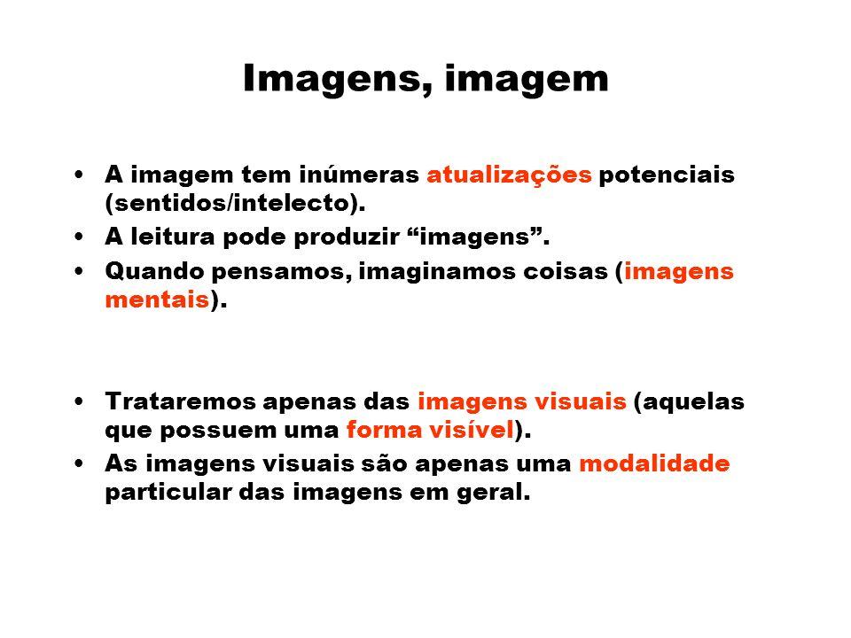 Imagens, imagem A imagem tem inúmeras atualizações potenciais (sentidos/intelecto).