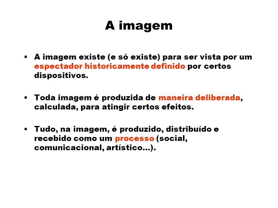 A imagem A imagem existe (e só existe) para ser vista por um espectador historicamente definido por certos dispositivos.