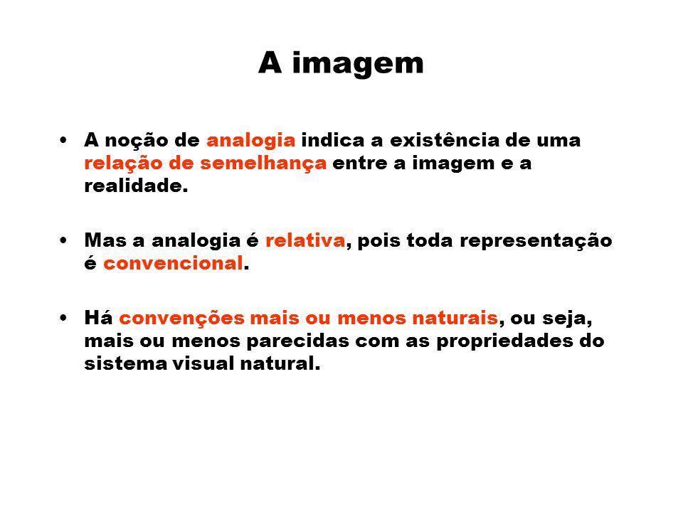 A imagem A noção de analogia indica a existência de uma relação de semelhança entre a imagem e a realidade.