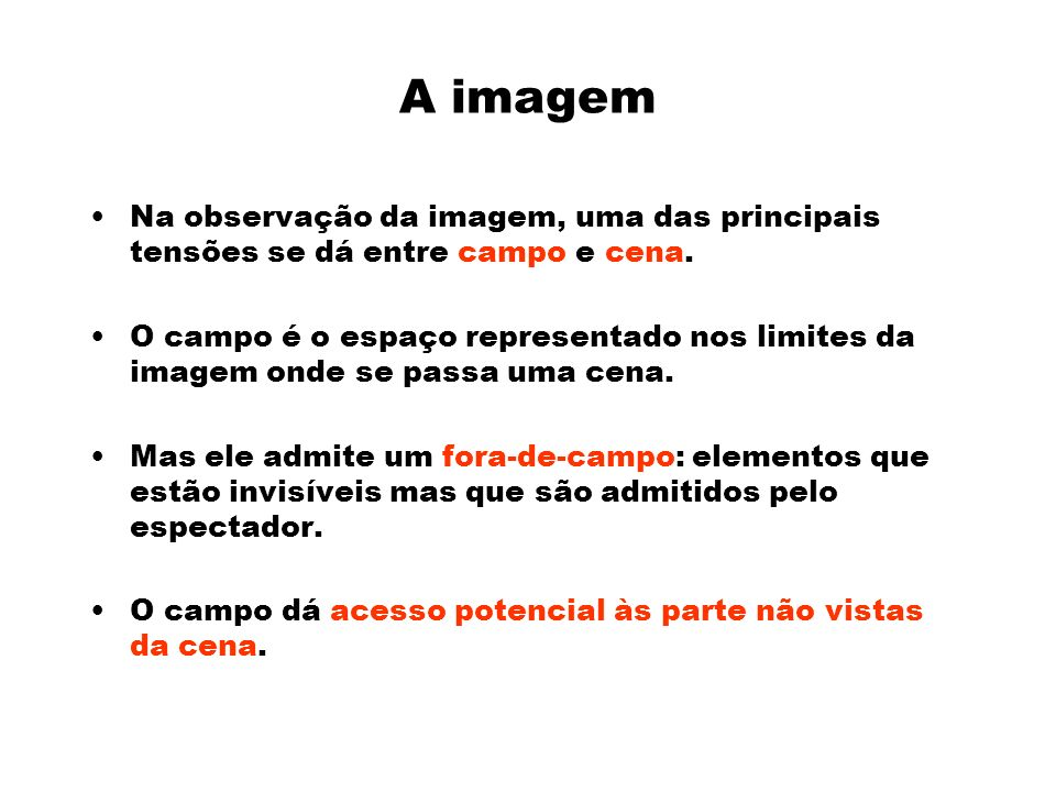 A imagem Na observação da imagem, uma das principais tensões se dá entre campo e cena.