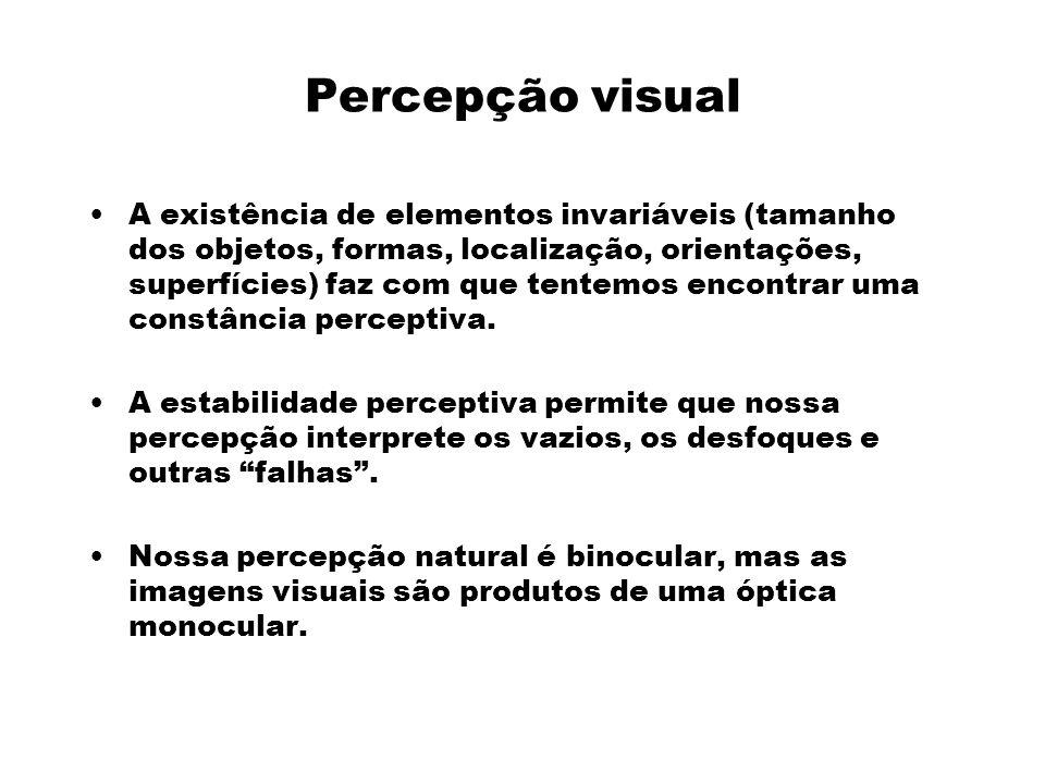 Percepção visual A existência de elementos invariáveis (tamanho dos objetos, formas, localização, orientações, superfícies) faz com que tentemos encontrar uma constância perceptiva.