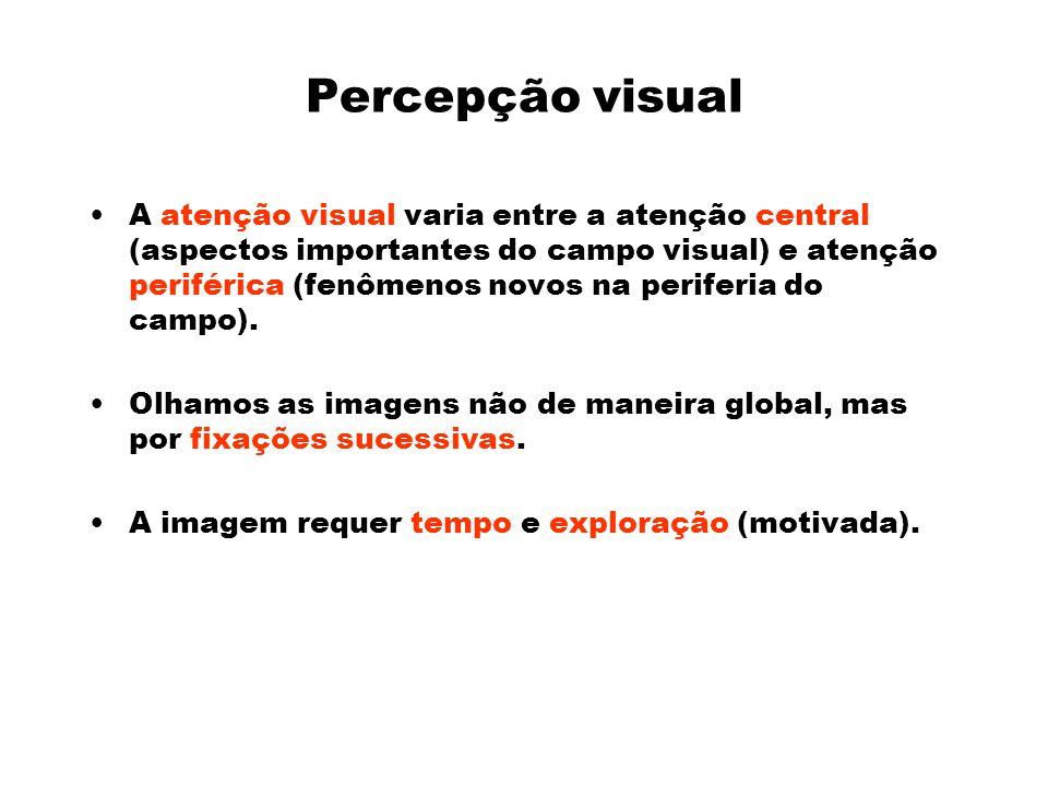 Percepção visual A atenção visual varia entre a atenção central (aspectos importantes do campo visual) e atenção periférica (fenômenos novos na periferia do campo).