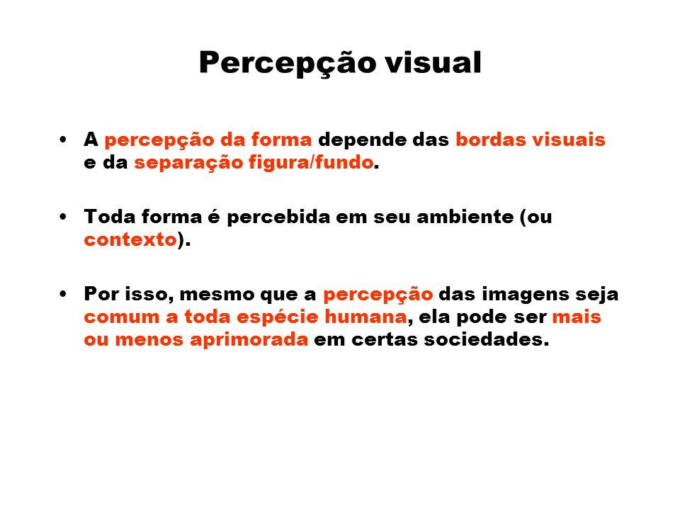 Percepção visual A percepção da forma depende das bordas visuais e da separação figura/fundo.