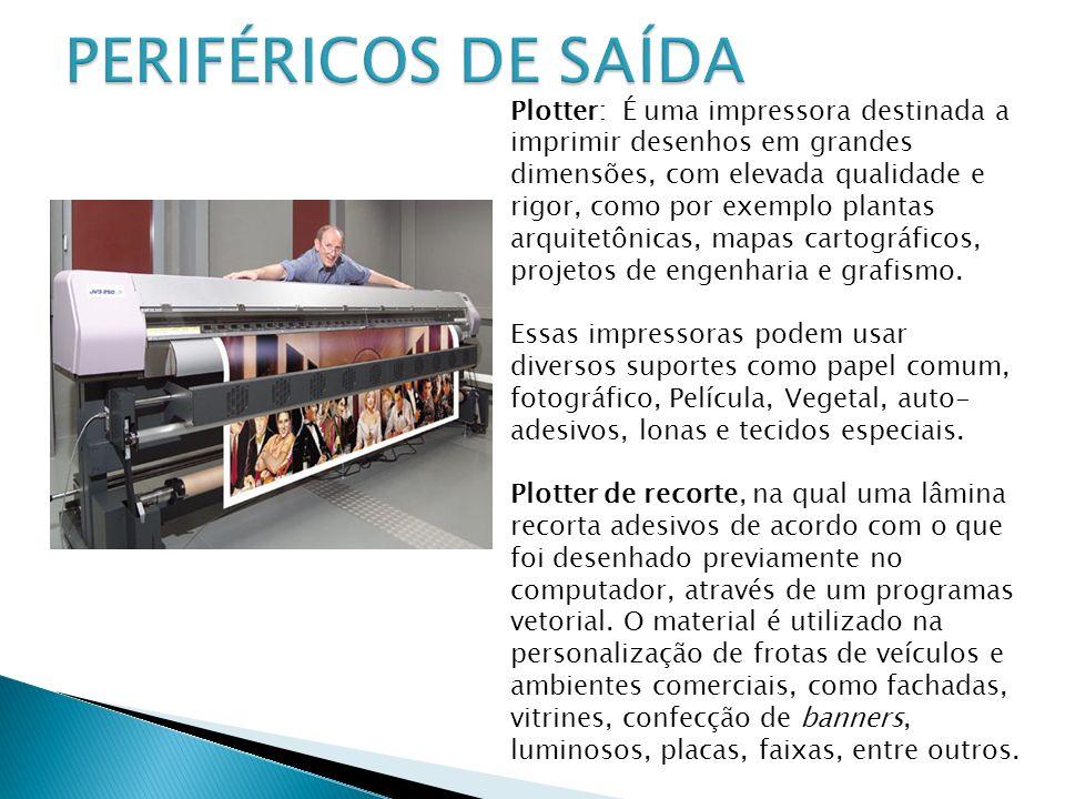 Plotter: É uma impressora destinada a imprimir desenhos em grandes dimensões, com elevada qualidade e rigor, como por exemplo plantas arquitetônicas,