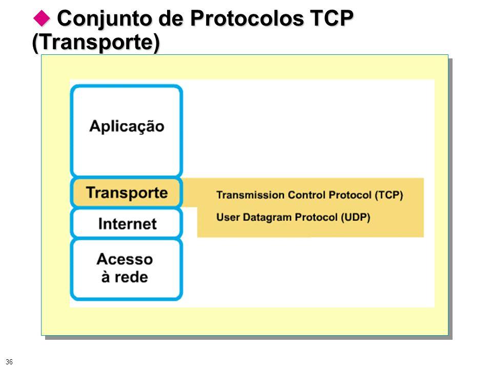 36 Conjunto de Protocolos TCP (Transporte) Conjunto de Protocolos TCP (Transporte)