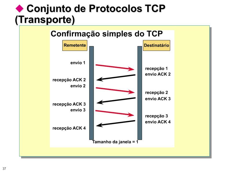 37 Conjunto de Protocolos TCP (Transporte) Conjunto de Protocolos TCP (Transporte)