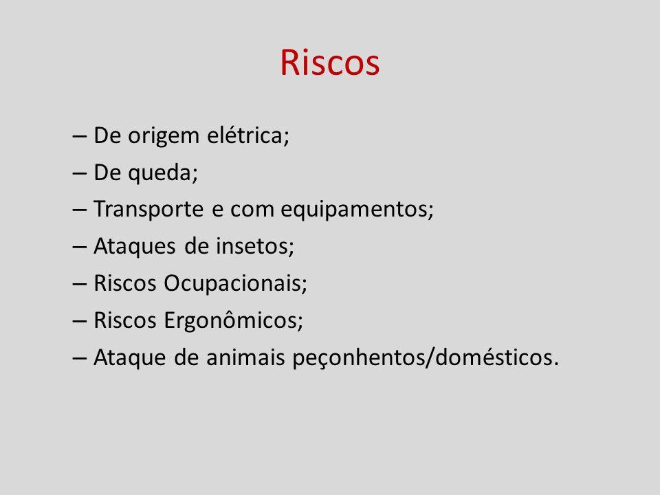 Riscos – De origem elétrica; – De queda; – Transporte e com equipamentos; – Ataques de insetos; – Riscos Ocupacionais; – Riscos Ergonômicos; – Ataque de animais peçonhentos/domésticos.