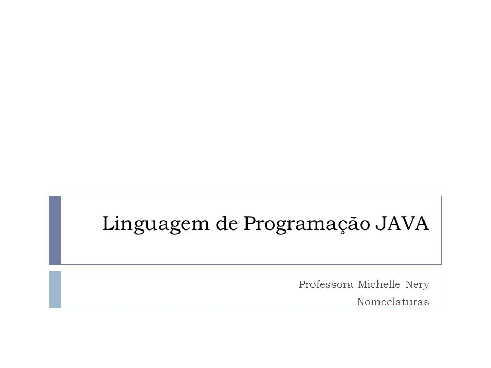 Linguagem de Programação JAVA Professora Michelle Nery Nomeclaturas