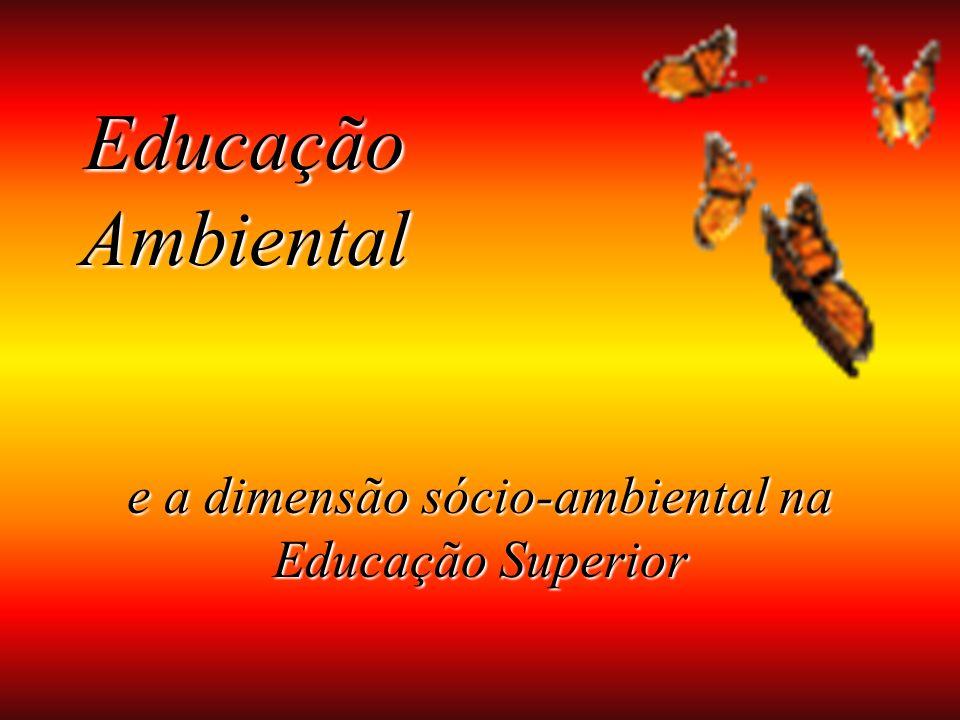Educação Ambiental e a dimensão sócio-ambiental na Educação Superior