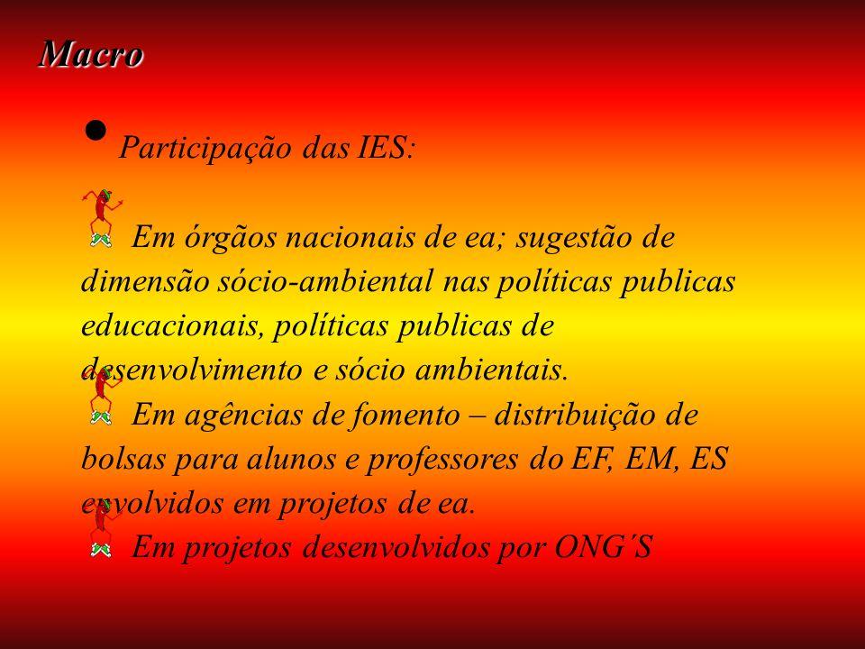 Macro Participação das IES: Em órgãos nacionais de ea; sugestão de dimensão sócio-ambiental nas políticas publicas educacionais, políticas publicas de desenvolvimento e sócio ambientais.