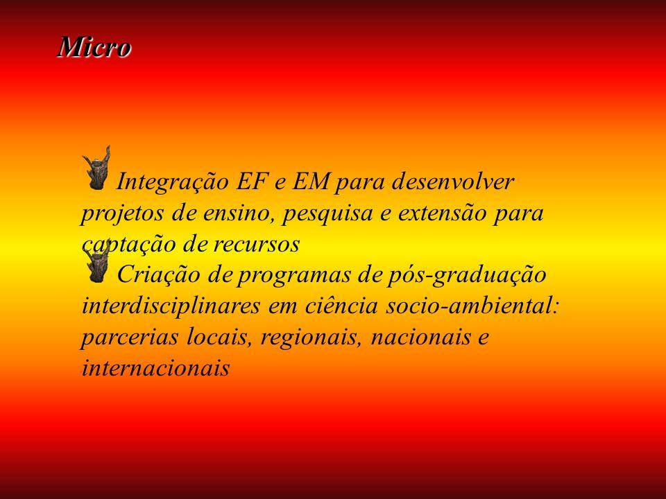 Micro Integração EF e EM para desenvolver projetos de ensino, pesquisa e extensão para captação de recursos Criação de programas de pós-graduação interdisciplinares em ciência socio-ambiental: parcerias locais, regionais, nacionais e internacionais