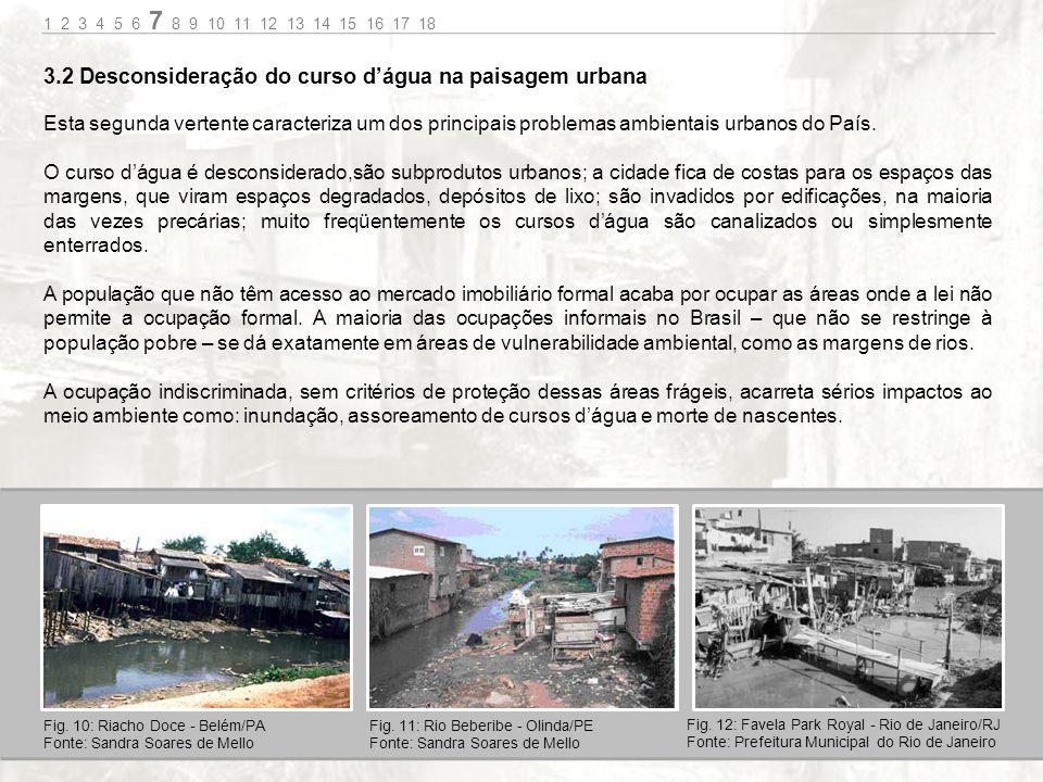 Esta segunda vertente caracteriza um dos principais problemas ambientais urbanos do País.