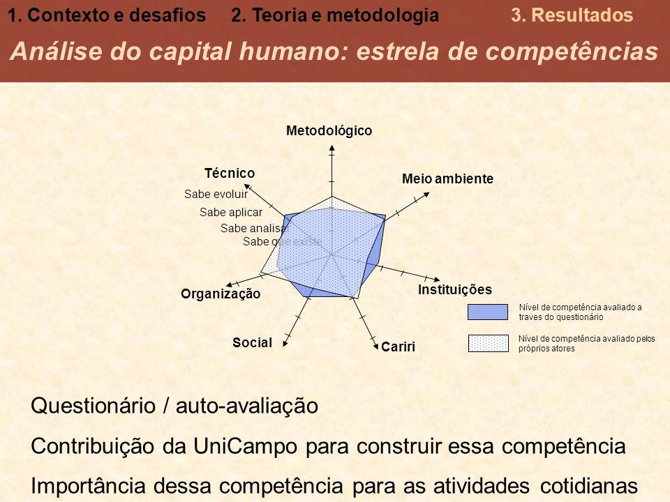 Análise do capital humano: estrela de competências Meio ambiente Instituições Organização Sabe que existe Sabe aplicar Sabe evoluir Sabe analisar Técn