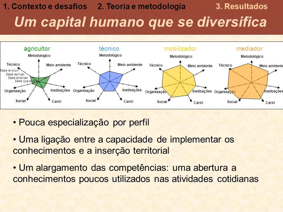 Um capital humano que se diversifica Pouca especialização por perfil Uma ligação entre a capacidade de implementar os conhecimentos e a inserção terri
