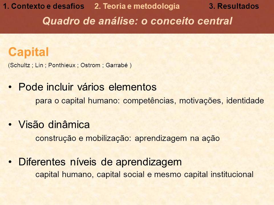 Capital (Schultz ; Lin ; Ponthieux ; Ostrom ; Garrabé ) Pode incluir vários elementos para o capital humano: competências, motivações, identidade Visã