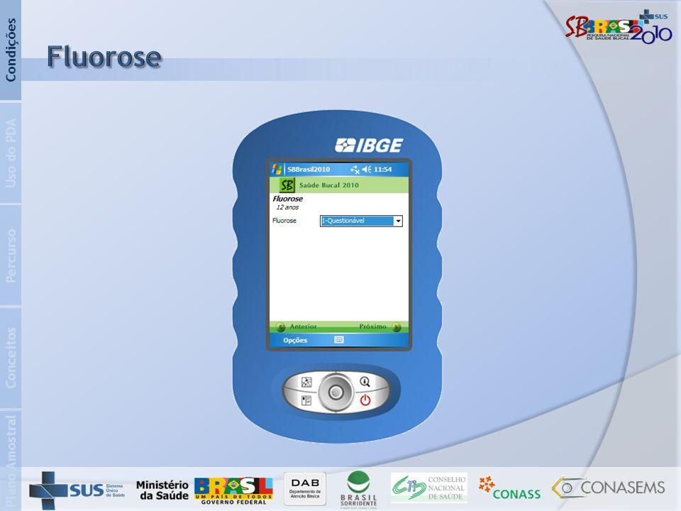 Plano Amostral Conceitos Percurso Uso do PDA Condições
