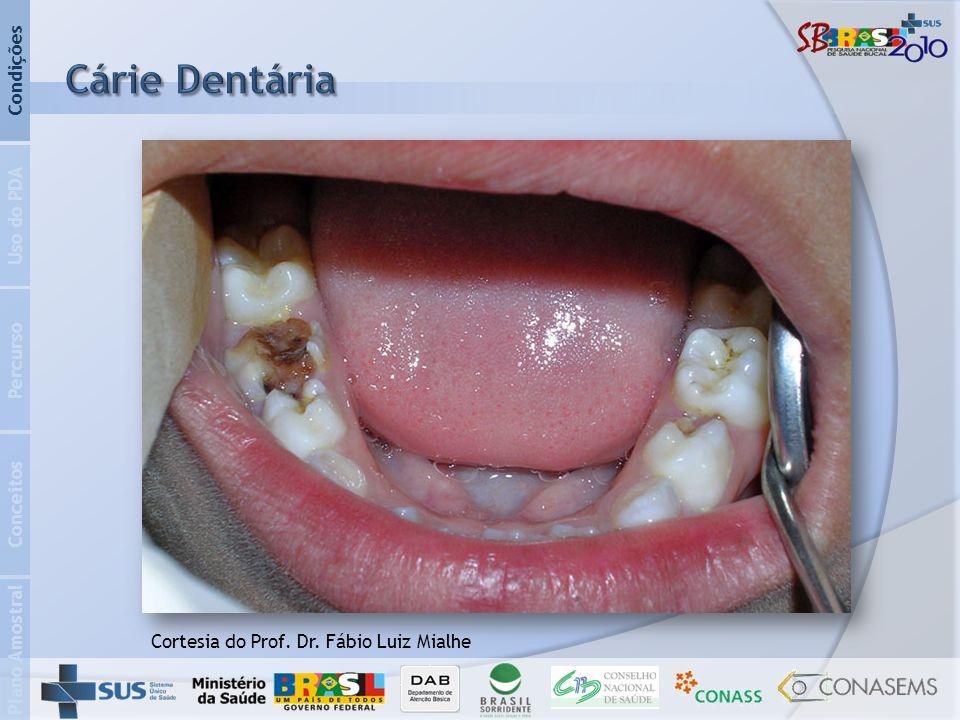 Plano Amostral Conceitos Percurso Uso do PDA Condições Cortesia do Prof. Dr. Fábio Luiz Mialhe