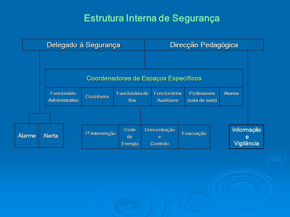 Delegado à Segurança Direcção Pedagógica Informação e Vigilância Coordenadores de Espaços Específicos FuncionárioAdministrativoCozinheira Funcionária