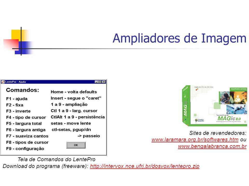 Ampliadores de Imagem Download do programa (freeware): http://intervox.nce.ufrj.br/dosvox/lentepro.ziphttp://intervox.nce.ufrj.br/dosvox/lentepro.zip