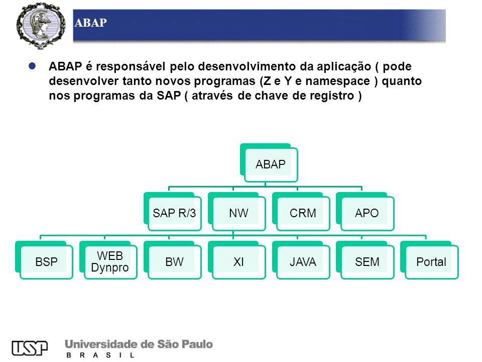 ABAP SAP R/3NWBSP WEB Dynpro BWXIJAVASEMPortalCRMAPO ABAP é responsável pelo desenvolvimento da aplicação ( pode desenvolver tanto novos programas (Z