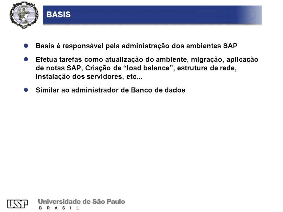 BASIS Basis é responsável pela administração dos ambientes SAP Efetua tarefas como atualização do ambiente, migração, aplicação de notas SAP, Criação