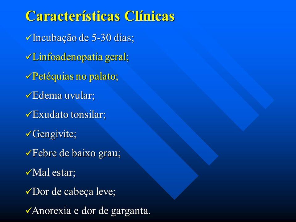 Características Clínicas Incubação de 5-30 dias; Linfoadenopatia geral; Linfoadenopatia geral; Petéquias no palato; Petéquias no palato; Edema uvular;