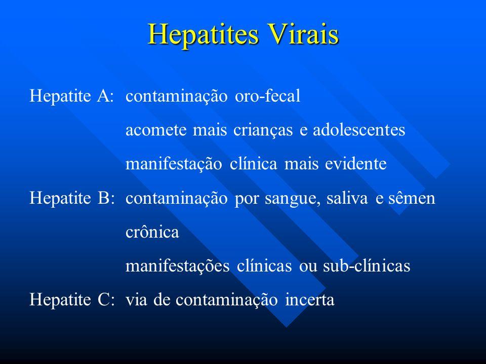 Hepatites Virais Hepatite A: contaminação oro-fecal acomete mais crianças e adolescentes manifestação clínica mais evidente Hepatite B: contaminação p
