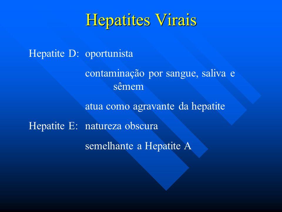 Hepatites Virais Hepatite D: oportunista contaminação por sangue, saliva e sêmem atua como agravante da hepatite Hepatite E: natureza obscura semelhan