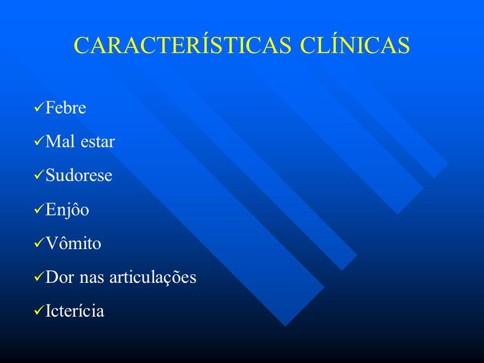 CARACTERÍSTICAS CLÍNICAS Febre Mal estar Sudorese Enjôo Vômito Dor nas articulações Icterícia