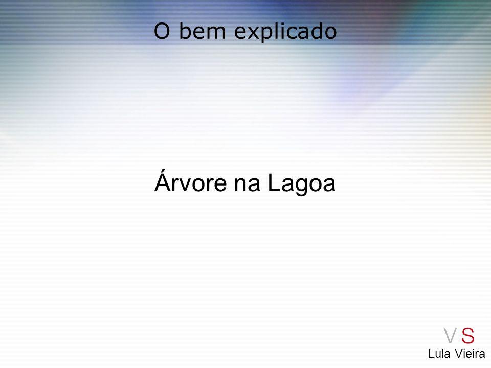 Lula Vieira O bem explicado Árvore na Lagoa