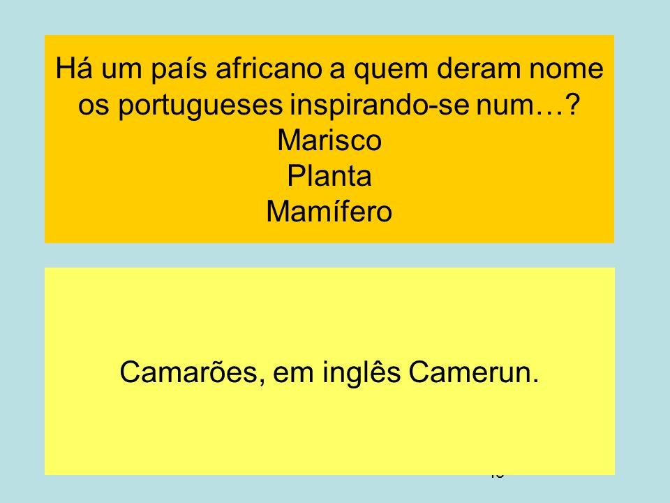 45 Há um país africano a quem deram nome os portugueses inspirando-se num…? Marisco Planta Mamífero Camarões, em inglês Camerun.