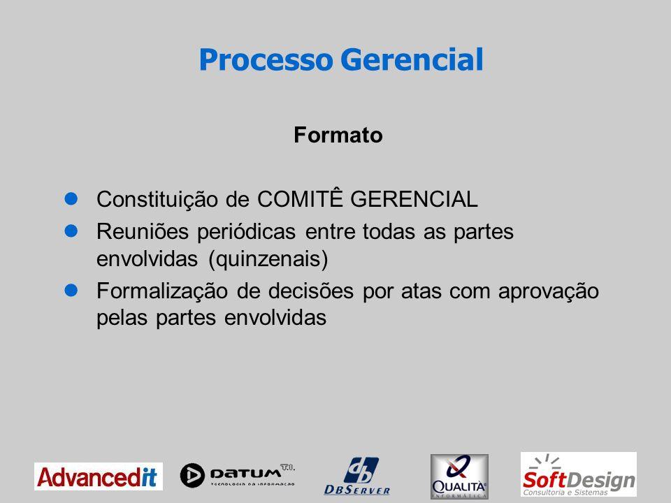 Componentes do Comitê 1 diretor de cada empresa do Consórcio 3 representantes da PROCERGS 1 ou mais representantes da SOFTSUL (Agente de Conformidade e Classificação da Especificação) Processo Gerencial