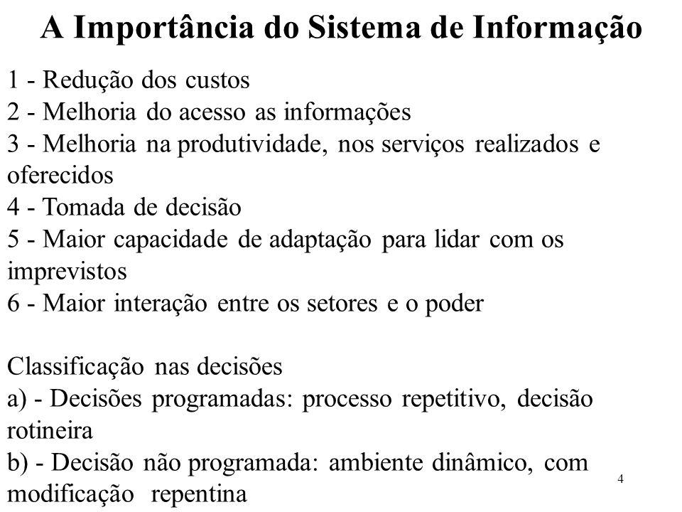 4 A Importância do Sistema de Informação 1 - Redução dos custos 2 - Melhoria do acesso as informações 3 - Melhoria na produtividade, nos serviços real