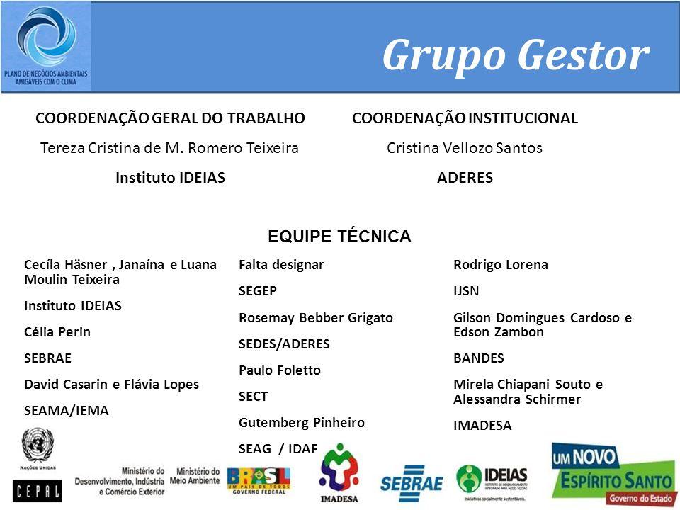 Grupo Gestor COORDENAÇÃO GERAL DO TRABALHO Tereza Cristina de M.